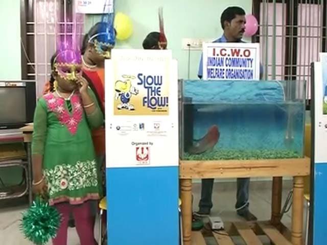 Videos : 'चाणक्य' मछली की भविष्यवाणी, टीम इंडिया की होगी जीत