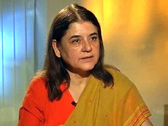 Video : 'Cow, Buffalo Slaughter Should be Banned': Minister Maneka Gandhi to NDTV