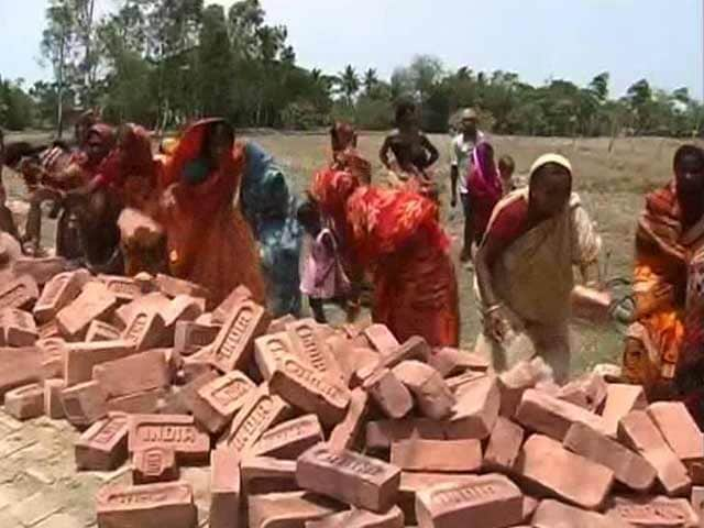 Video : In Bengal's Sundarbans, a Road Built With Voluntary Labour