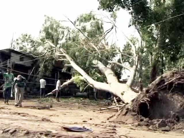 Video : Storm Claims Lives of 32 People in Bihar, Injures Over 80