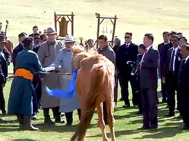 Video : मंगोलिया के पीएम ने मोदी को गिफ्ट किया भूरे रंग का घोड़ा 'कंटक'