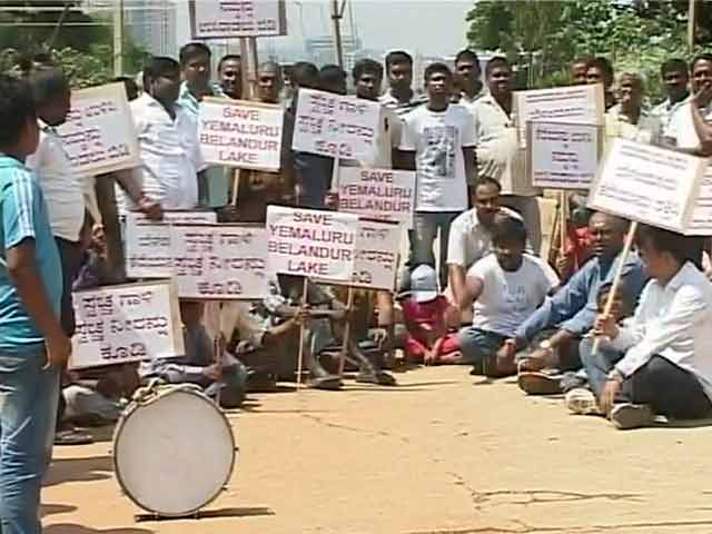 Video : Protests in Bengaluru to Save Yamlur Lake, Where Flames Erupted