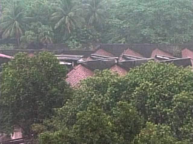 Video : मॉनसून केरल पहुंचा, हो रही है झमाझम बारिश