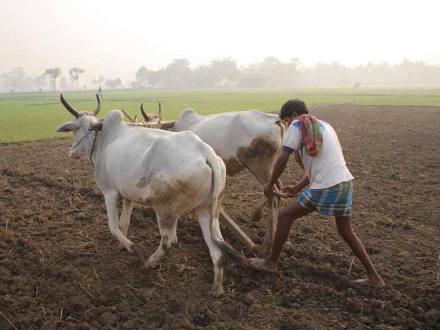 Videos : ज़मीन अधिग्रहण बिल का अब कृषि वैज्ञानिकों ने भी किया विरोध
