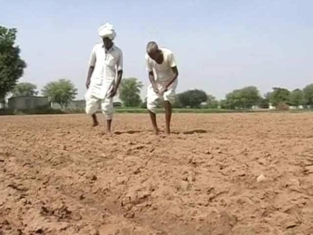 Video : Fear of Drought Makes Distressed Farmers Seek Permission to Die