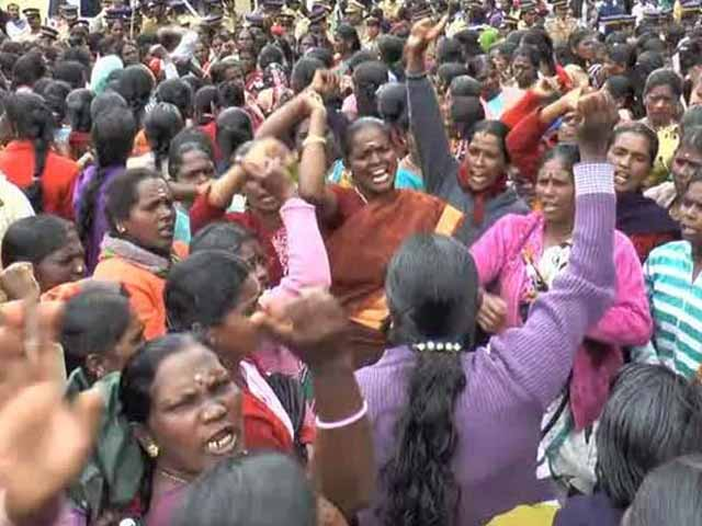 Video : In Protest At Kerala Plantations, 5,000 Women Tell Men, 'Stay Out'