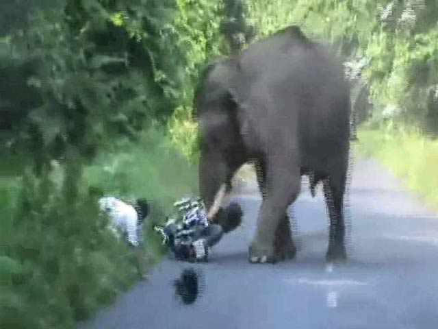 Video : Narrow Escape for Bikers in Jumbo Attack
