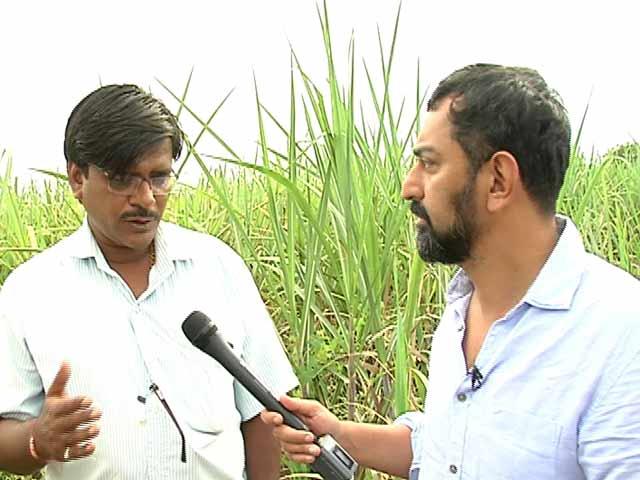 Video : Truth vs Hype: Marathwada's Unequal Fields