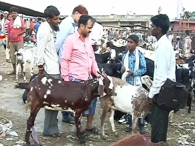 Video : बकरों की ऑनलाइन शॉपिंग- 'बटन दबाओ, बकरा पाओ'