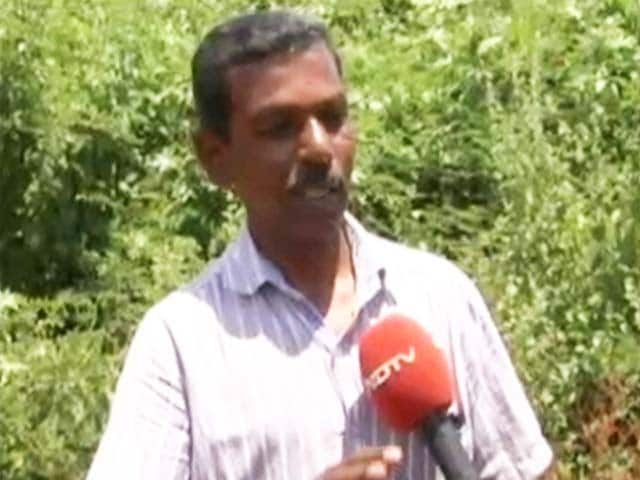 Video : Poisoned 130 Dogs, Ready to Go to Jail, Says This Kerala Man