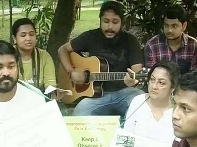 Video : In Kolkata, a Condolence Meet for a 'Murdered' Tree