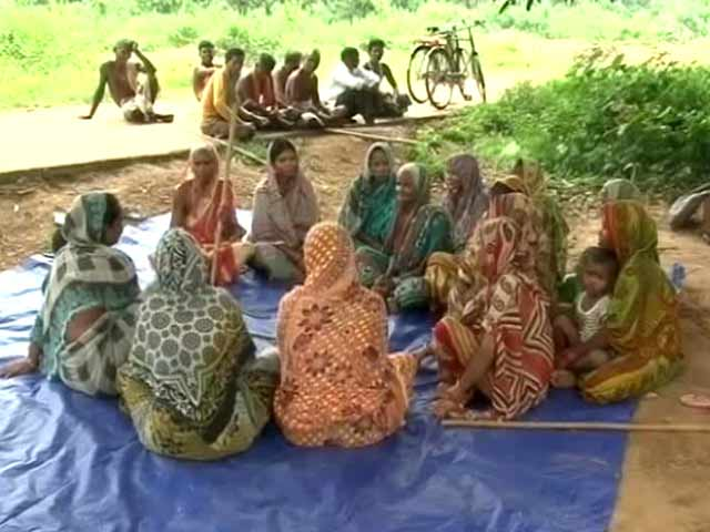 Video : In an Odisha Village, a Bold Conservation Movement by Women