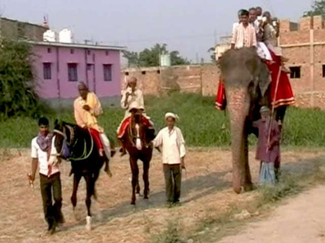 Video : समस्तीपुर में हाथी-घोड़ों पर चढ़कर वोट करने पहुंचे लोग