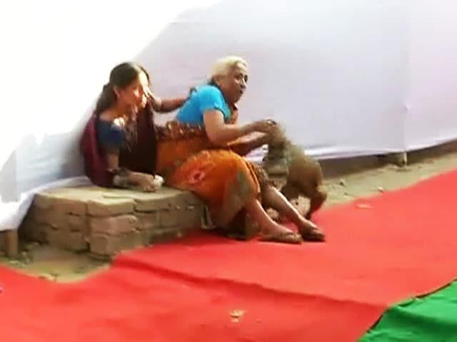 Video : बिहार में मतदान केन्द्र पर बंदर ने मचाया आतंक, 5-6 लोगों को काटा