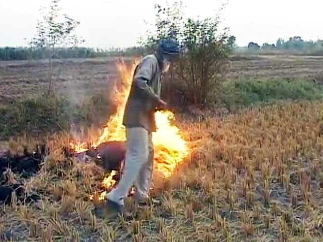 Videos : पंजाब के जलते खेतों से फैलता जहर, नासा ने जारी की तस्वीरें