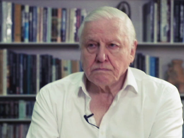 Video : Exclusive Interview With Sir David Attenborough