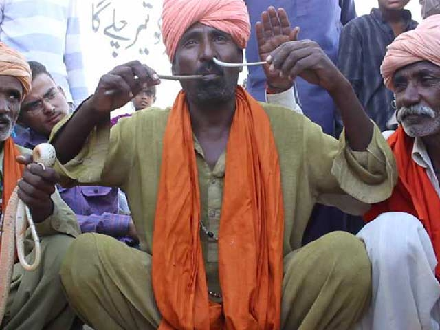 Video : Snake Charmer Puts Snake through Nose and Lets it Come Out from Mouth
