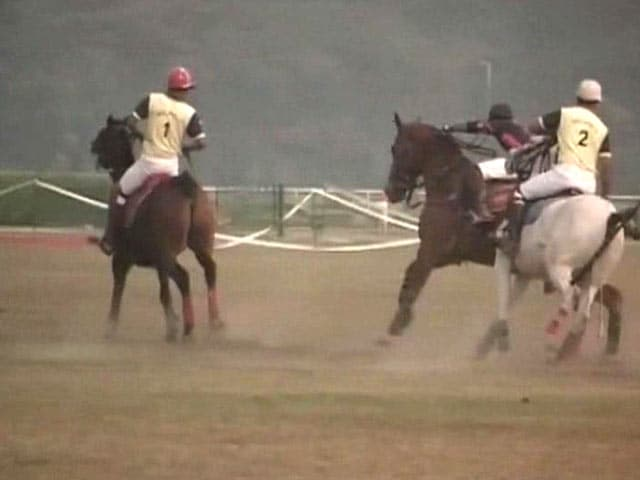 Video : A Return Of Polo Warms Kolkata Winters