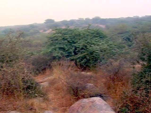 Videos : हरियाणा वन घोटाला : सूचना आयोग ने एक बार फिर प्रधानमंत्री कार्यालय से जानकारी देने को कहा