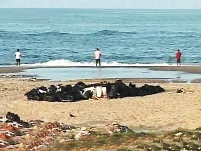 Video : Citizens' Voice: Why Chennai Beaches Demand Action