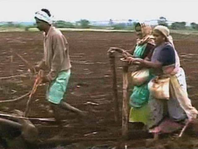 Video : Feminization of Indian Agriculture