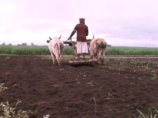 Video : How Health Reforms Can Save Indian Farmers