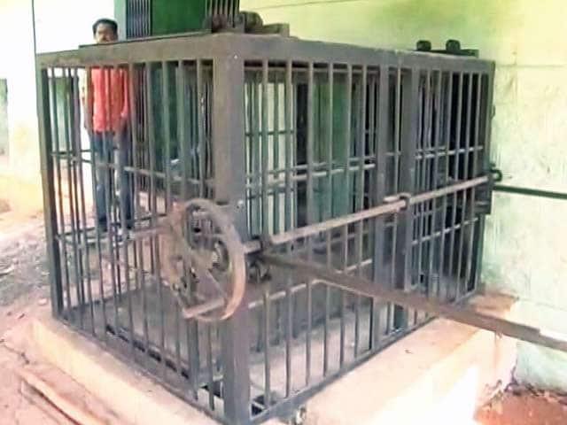 Video : बेंगलुरु : पिंजरे में कैद तेंदुआ भाग निकला