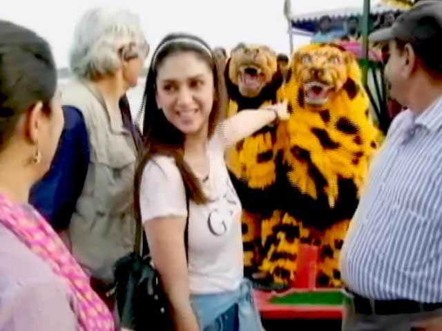 Video : बाघ  बचाओ अभियान : नायाब सुंदरबन को देखिए अदिति राव की नज़रों से