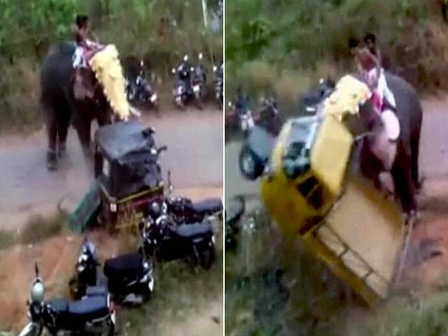 Video : कैमरे में कैद : केरल में गुस्साए हाथी ने पांच घंटे तक जमकर मचाया उत्पात