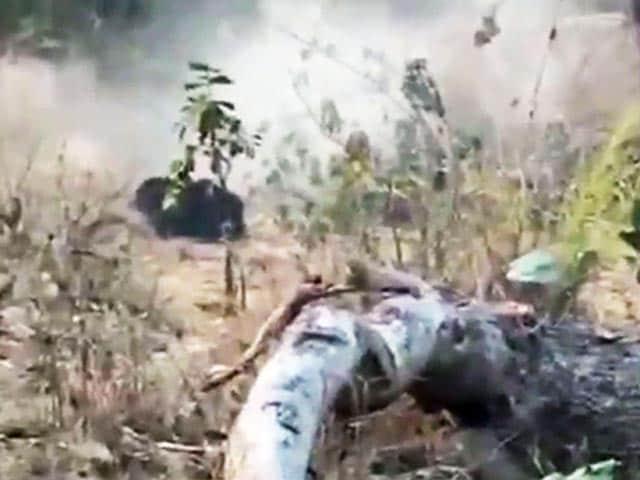 Videos : छत्तीसगढ़ : महासमुंद में जंगली भालू को मारने के लिए चली 100 गोलियां