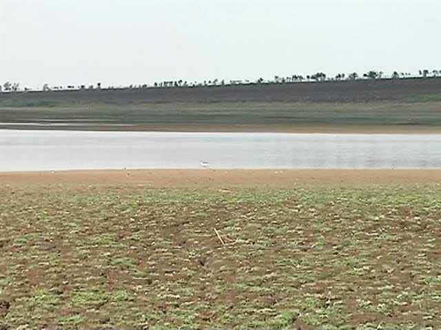 Video : Drought-Hit Maharashtra Shuts Down Swimming Pools For 3 Months