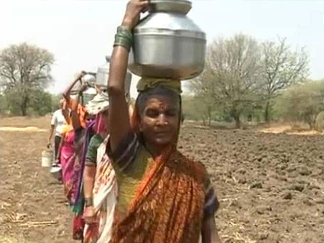 Video : In Drought-Hit Marathwada, Parched Wells, Lifeless Fields And Little Help
