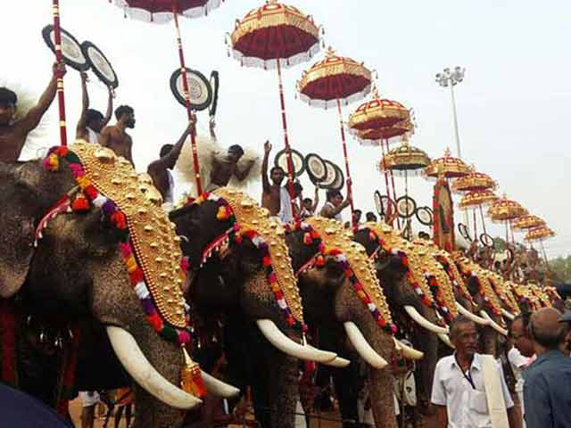 Video : Apart From Fireworks, Injured Elephants In This Temple Festival In Kerala