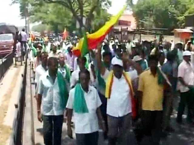 Video : Drought, Closure Of Factory Turn Sugarcane Farmers Bitter In Karnataka