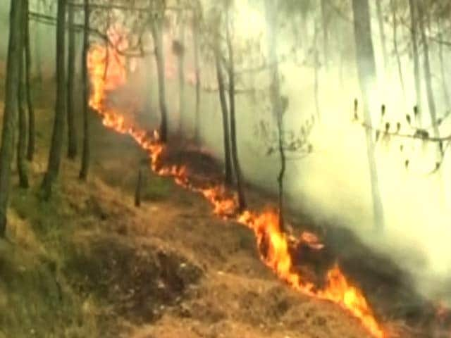 Video : Uttarakhand Forest Fires Now On 88th Day; 6,000 People At Work
