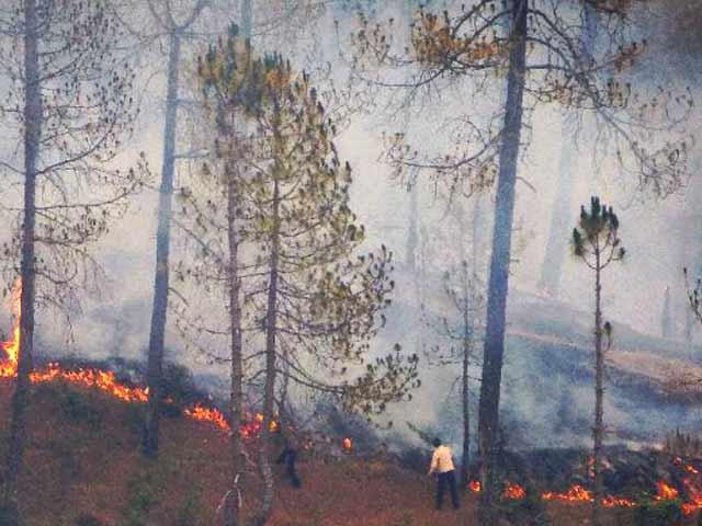 Video : इंडिया 9 बजे : आग से धधक रहे हैं जंगल, हज़ारों गांवों के लोग परेशान