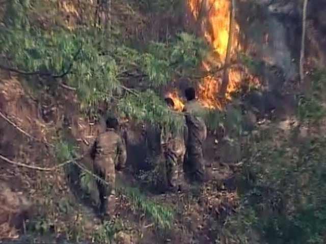 Video : सोलन में आग से ही बुझाई जा रही है जंगल की आग
