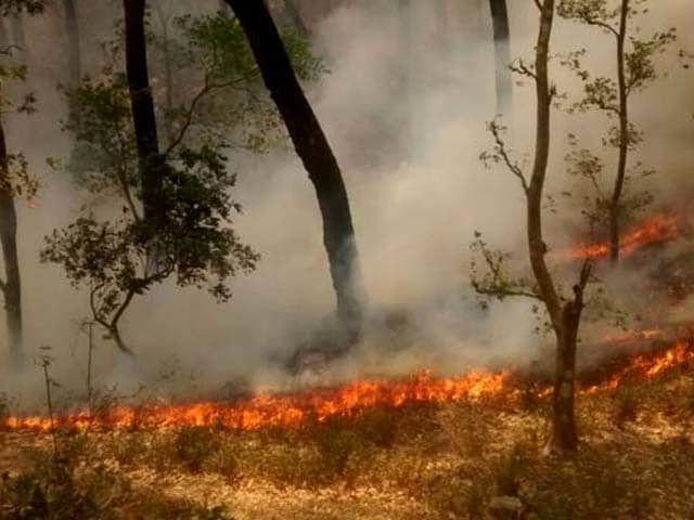 Video : 30 Km From Uttarakhand's Bhimtal, How A New Fire Spread Within Minutes