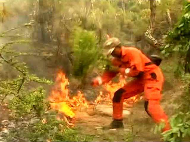 Video : 8 Men, 8 Hours: That's What It Took To Douse Fire On 1 Hill Of Uttarakhand