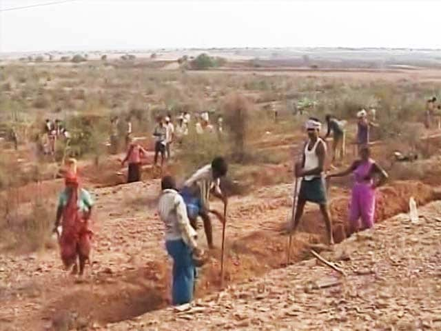 Video : With Work, Karnataka Attempts To Stop Migration Due To Drought