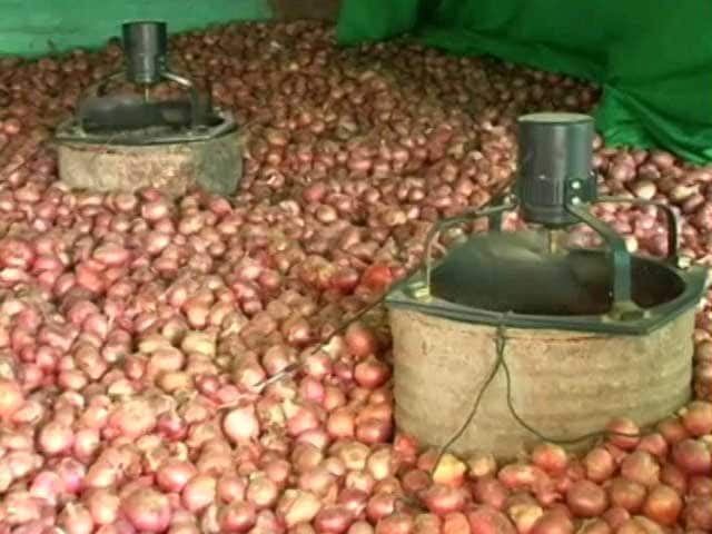 Video : How To Store Onion Without Storehouses? Teen Finds A Way Out