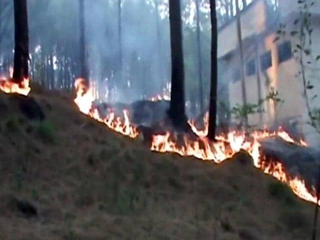 Video : Forest Fires Rage In Pirpanjal Region In Jammu And Kashmir