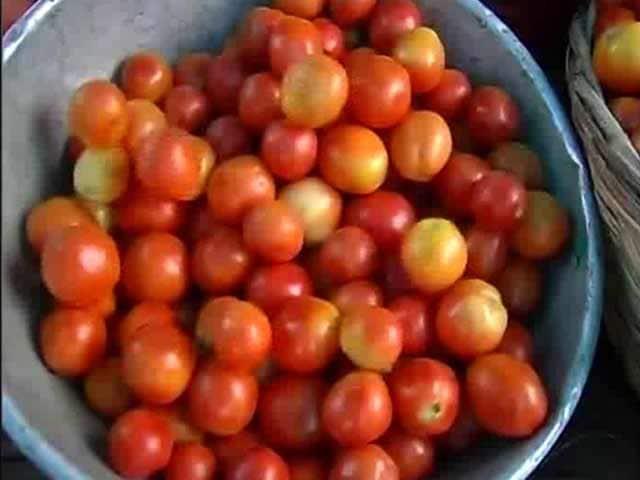 Video : Rs 100-A-Kg Tomatoes Despite Glut. NDTV Investigates