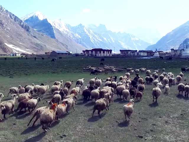 Video : This Aerial View Of Zanskar Region In Ladakh Is Breathtaking