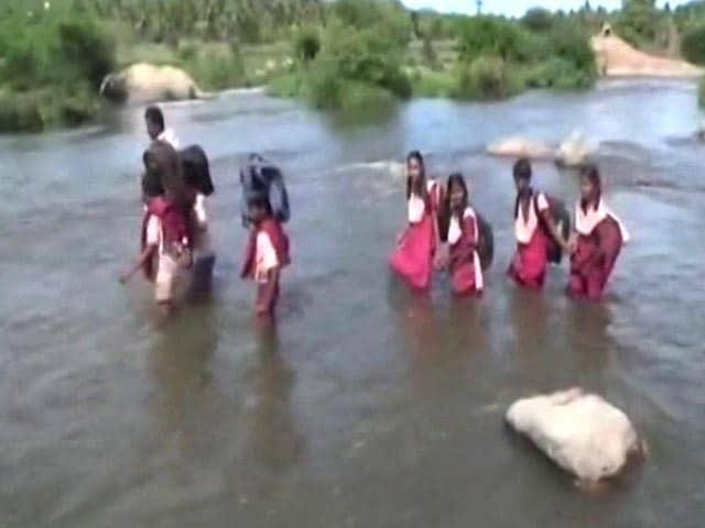 Video : No Bridge On Tamil Nadu River, Children Cross It On Foot To Reach School
