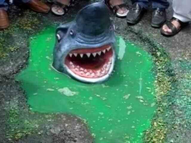 Video : दिल्ली : गड्ढों में मगरमच्छ और शार्क के पुतले बनाकर कांग्रेस ने किया प्रदर्शन