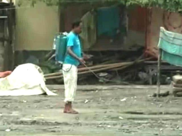 Video : Dengue Claims 13 Lives In Kolkata, 112 New Cases In 48 Hours