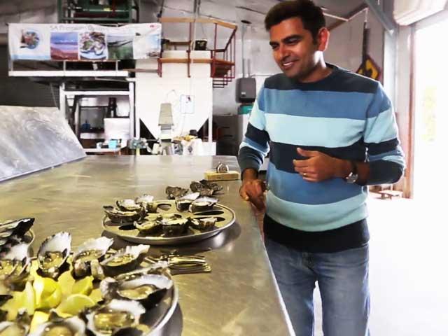 Video : #GLAadventure Explores The Best Of Australia – Head Of Bight & Smoky Bay