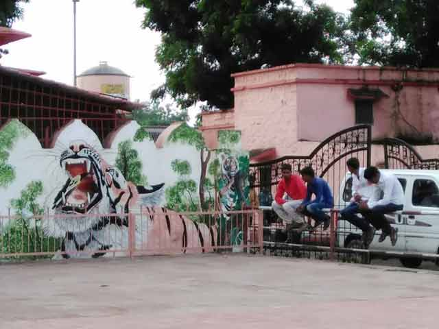 Video : Rajasthan's Railway Stations Turn Into Art Galleries