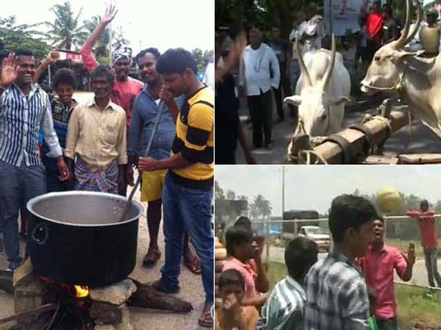 Video : Cooking, Volleyball, Protests On Highway Between Karnataka's Main Cities
